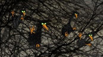 3-05.blackbirds
